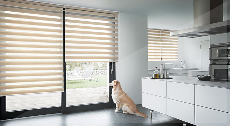 justin view day rollers products roller blinds dual interior night cheap online double